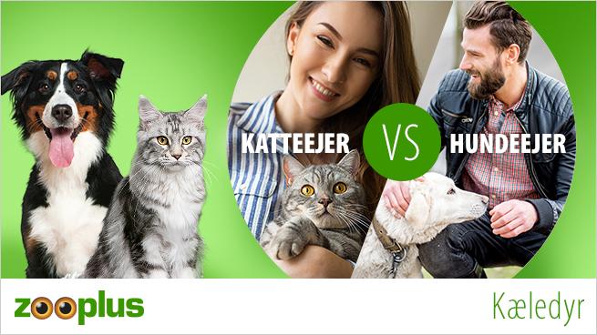 Hundeejer VS Katteejer