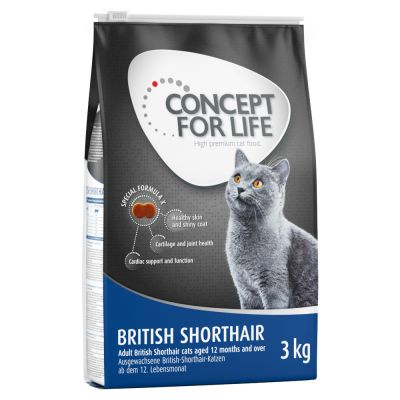 concept for life british shorthair