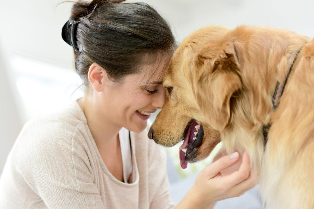 En kvinde & hund der bonder