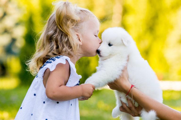 Hund kys