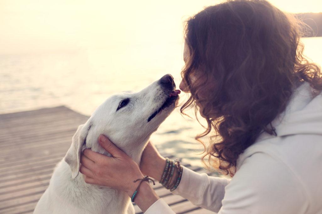 Kvinde & hund på en bro