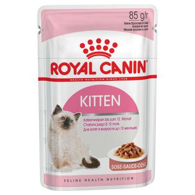 Royal Canin Kitten i sovs