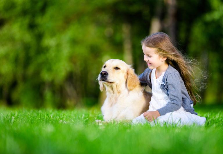 Pige med en golden retriever på græs