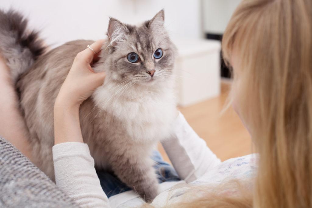 Ung kvinde med sin kat