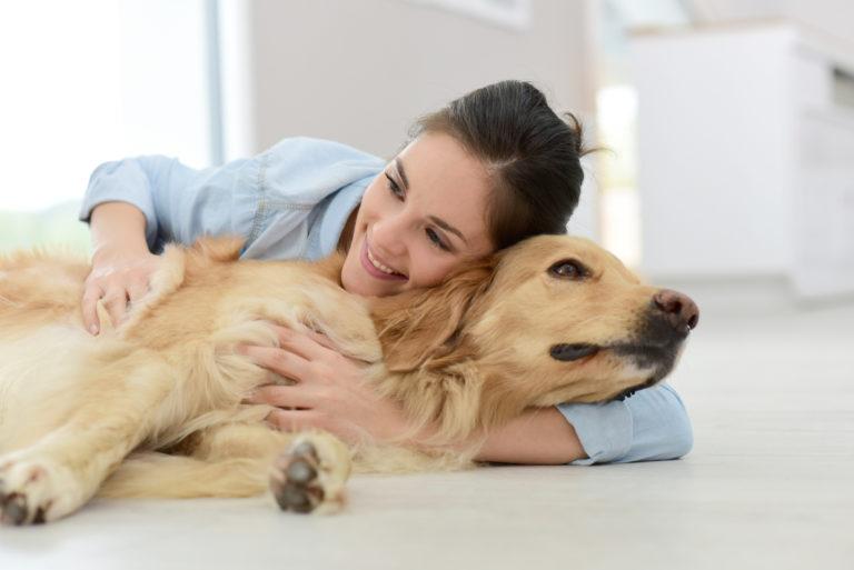 hund med fordøjelsesproblemer bliver krammet af ejer