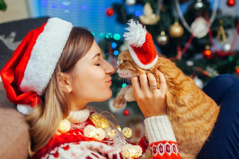julegave ideer til katte