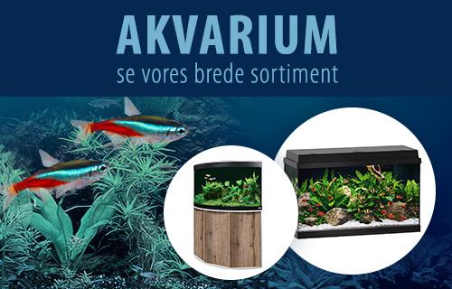 Akvarie sortiment