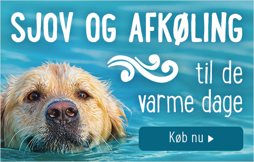 Vandlegetoej til hunde