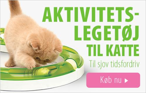 Aktivitetslegetoej til katte