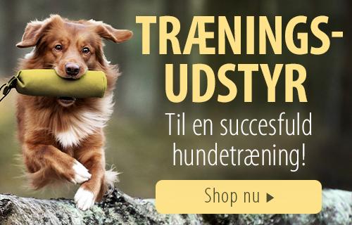 Traeningsudstyr til hunde
