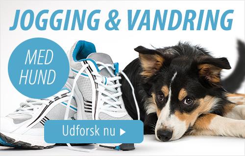 Jogging og vandring med hund