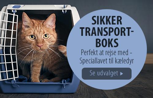 Transportbokse til katte