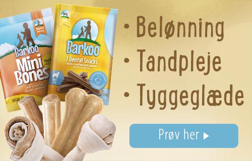 Barkoo Dental Snacks