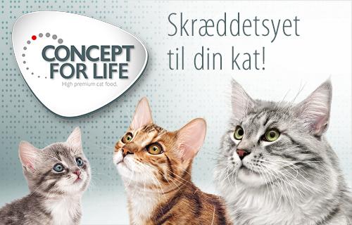 Concept for Life til katte