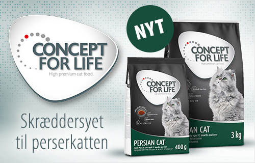 Concept for Life Persian