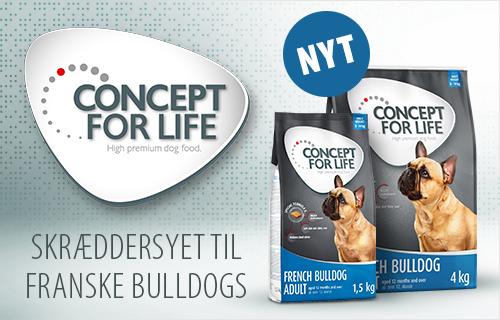 Concept For Life Fransk Bulldog