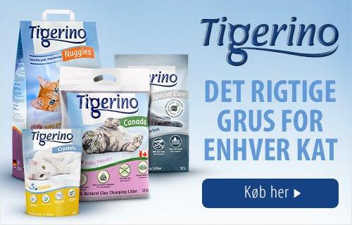 Tigerino Grus Kat